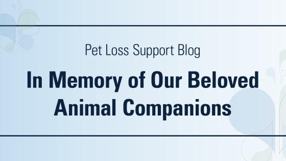 DoveLewis Emergency Animal Hospital Blog on Pet Loss Support