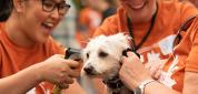 Events at DoveLewis Emergency Animal Hospital