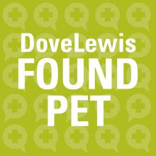 Lost Pets in Portland at DoveLewis Emergency Animal Hospital